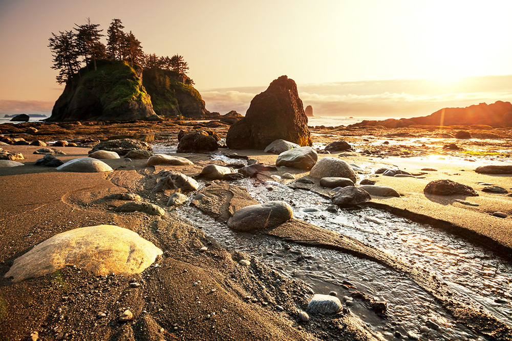 Sun casting over the beach at Olympic National Park in Port Washington.