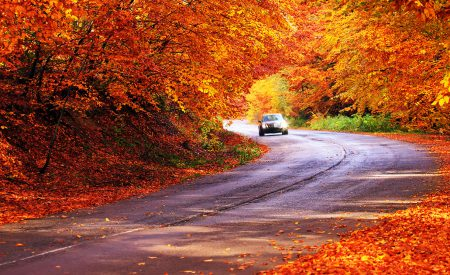 5 Places to See Fall Foliage in the US