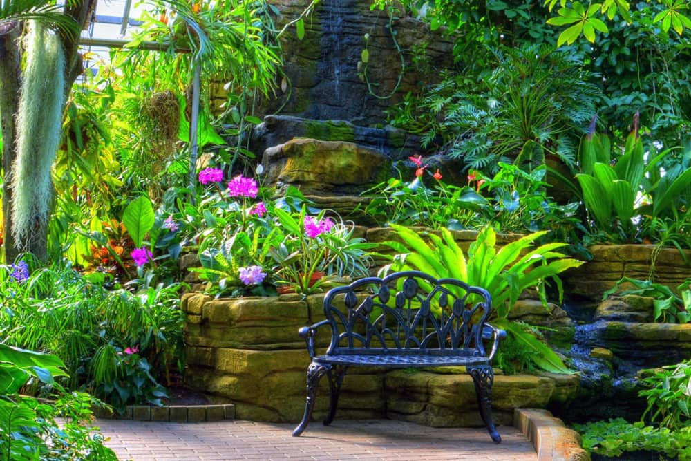 A well-manicured collection of plants and flowers surrounding a bench at the Garfield Park Conservatory in Indianapolis, Indiana.