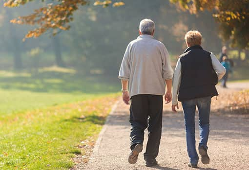 Two senior couples walking on a path on a sunny fall day.