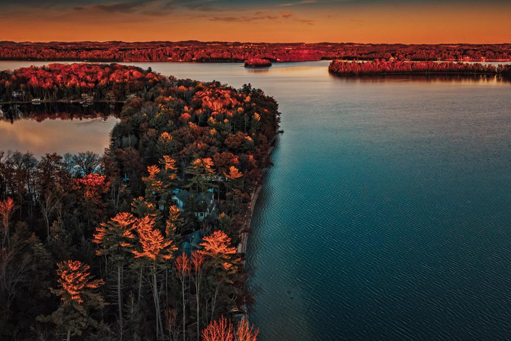 Trees and shoreline of Traverse City Michigan