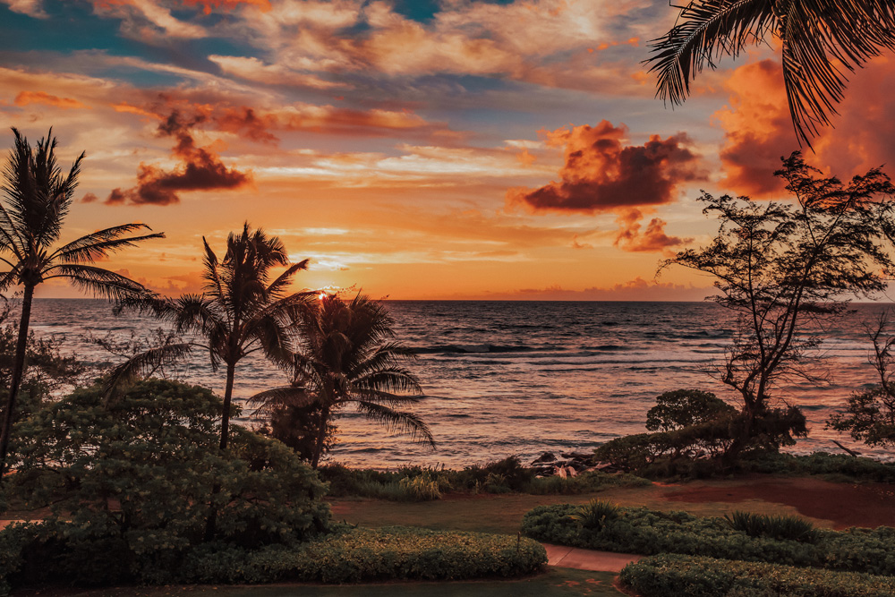 Exotic Tropical Paradise Sunset Sunrise Beach Ocean Waves Kauai Hawaii Kapaa