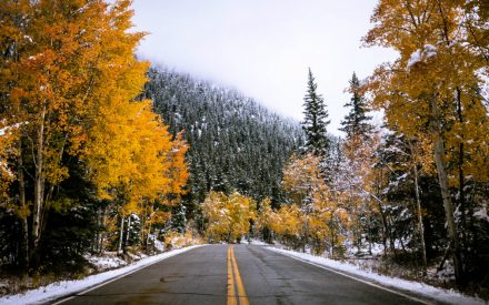 How to Drive Safely in the Snow and Other Winter Driving Tips