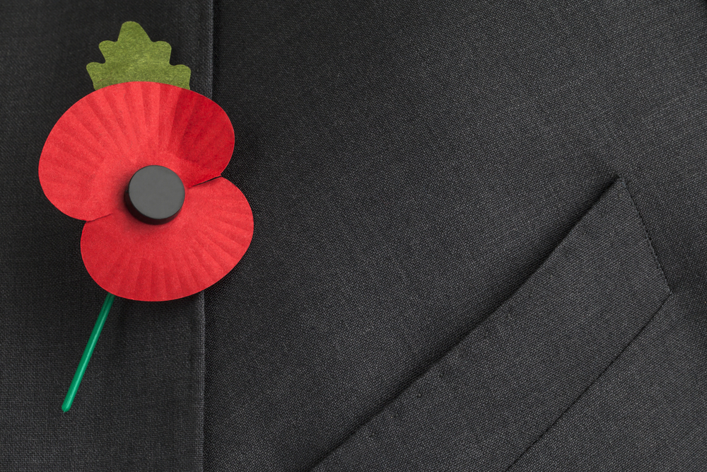 buddy poppy worn in remembrance of veterans on memorial day