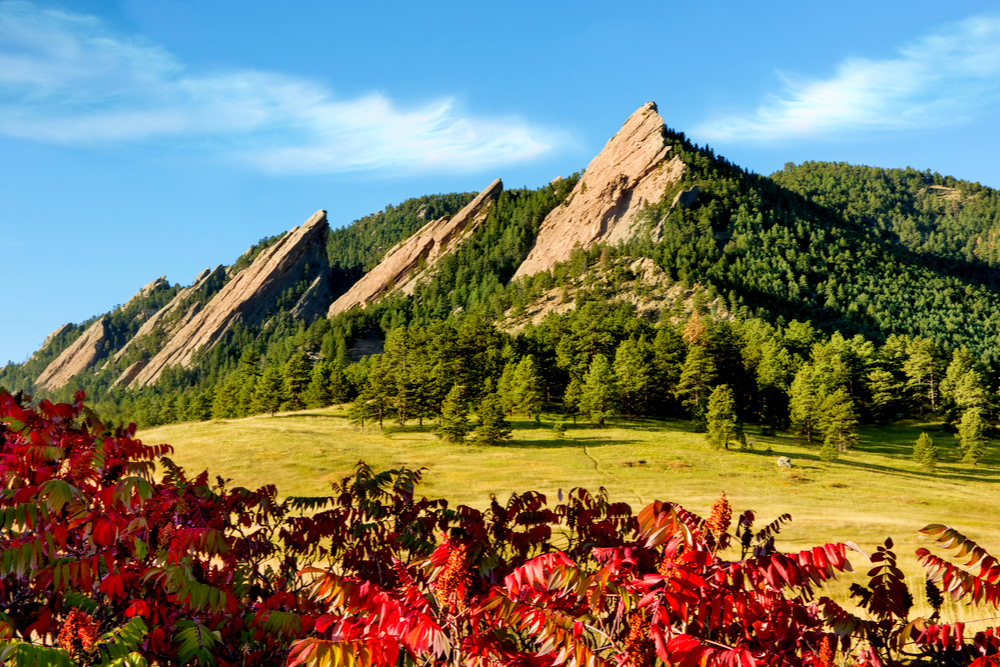 Rocky Mountain Scenic Flatirons with Fall Foliage Sumac