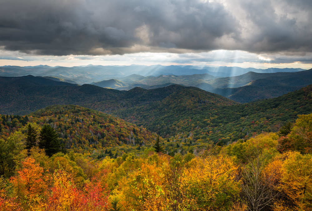 Mountain landscape features fall foliage on the parkway near Asheville, North Carolina